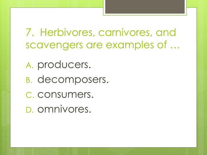 7.  Herbivores, carnivores, and scavengers are examples of …