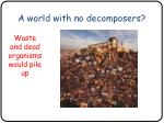 a world with no decomposers