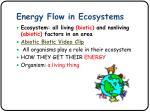 energy flow in ecosystems1