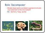 role decomposer