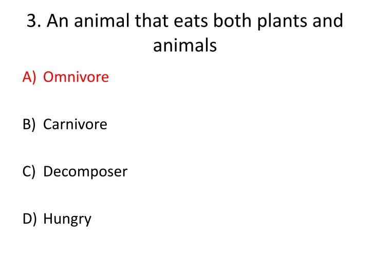 3.An animal that eats both plants and animals