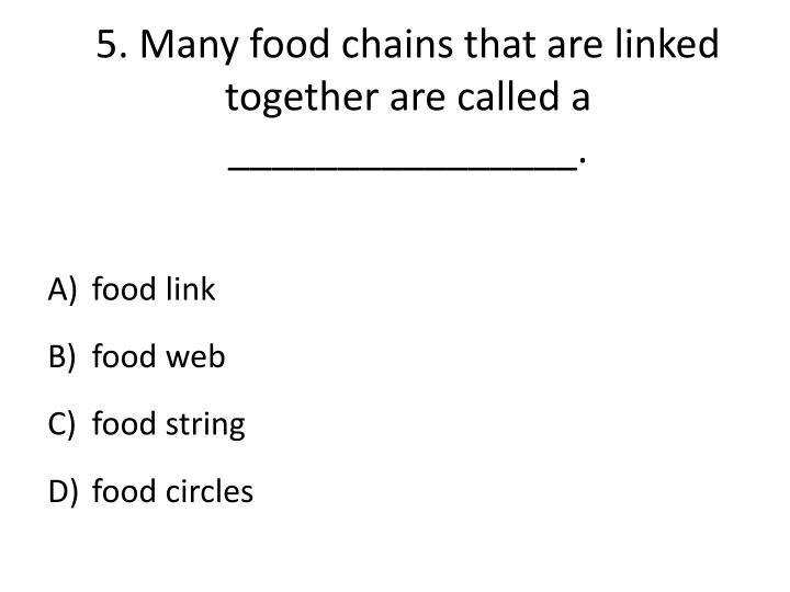 5.Many food chains that are linked together are called a ________________.