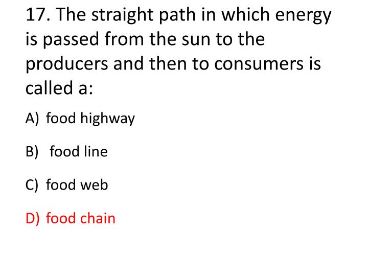 17.The straight path in which energy is passed from the