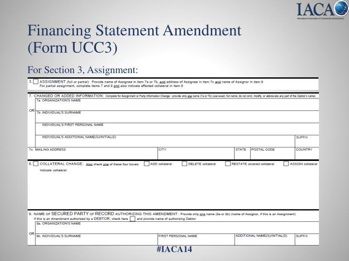 Financing Statement Amendment