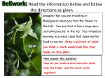 bellwork read the information below and follow the directions as given
