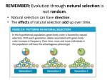 remember evolution through natural selection is not random