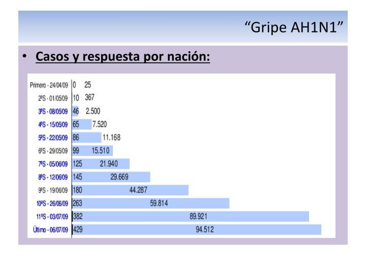 """""""Gripe AH1N1"""""""