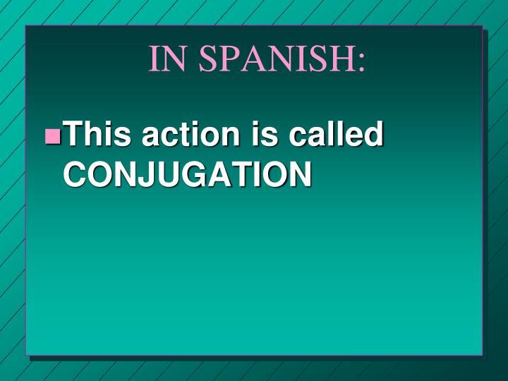 IN SPANISH: