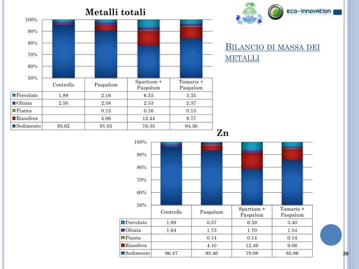 Bilancio di massa dei metalli