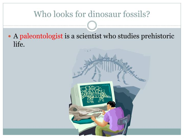 Who looks for dinosaur fossils?