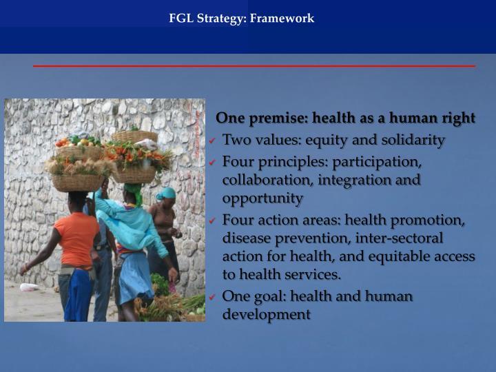 FGL Strategy: Framework