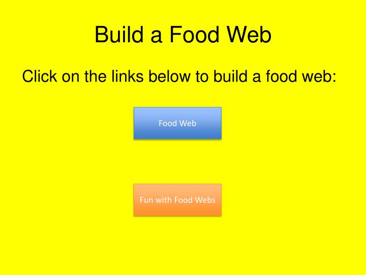 Build a Food Web