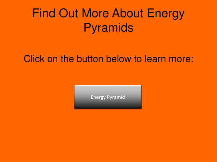 Find Out More About Energy Pyramids