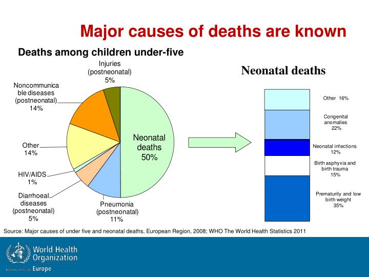 Major causes of deaths are known