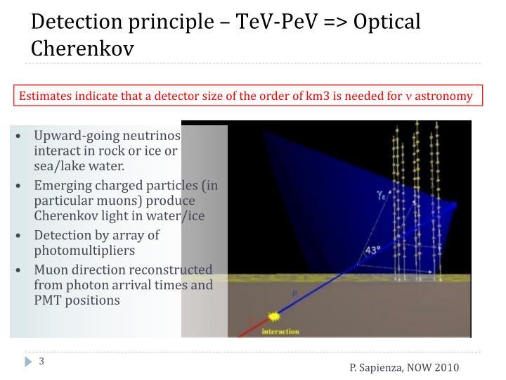 Detection principle –