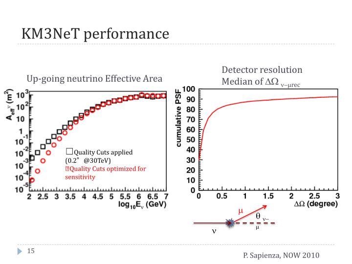 KM3NeT performance