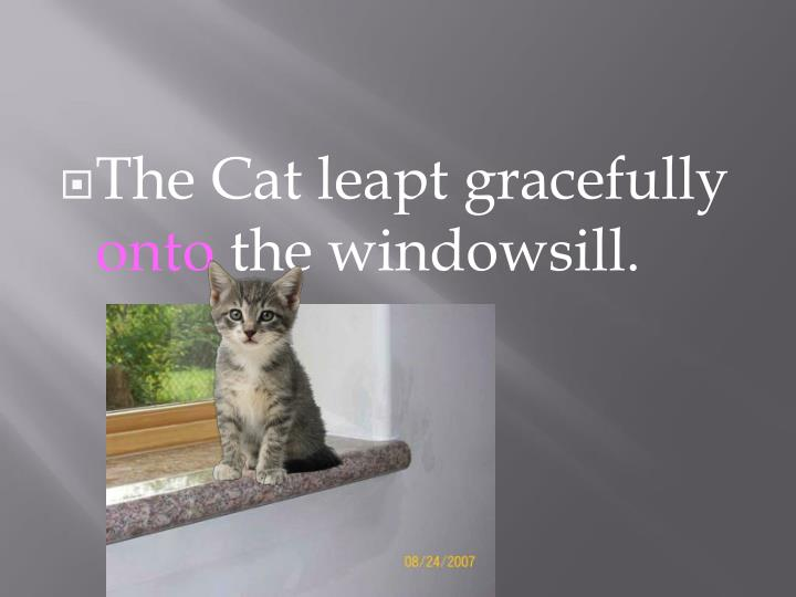 The Cat leapt gracefully