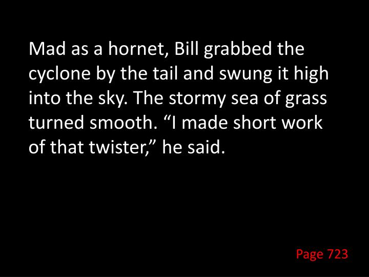 """Mad as a hornet, Bill grabbed the cyclone by the tail and swung it high into the sky. The stormy sea of grass turned smooth. """"I made short work of that twister,"""" he said."""