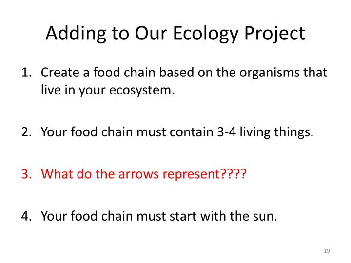 Adding to Our Ecology Project