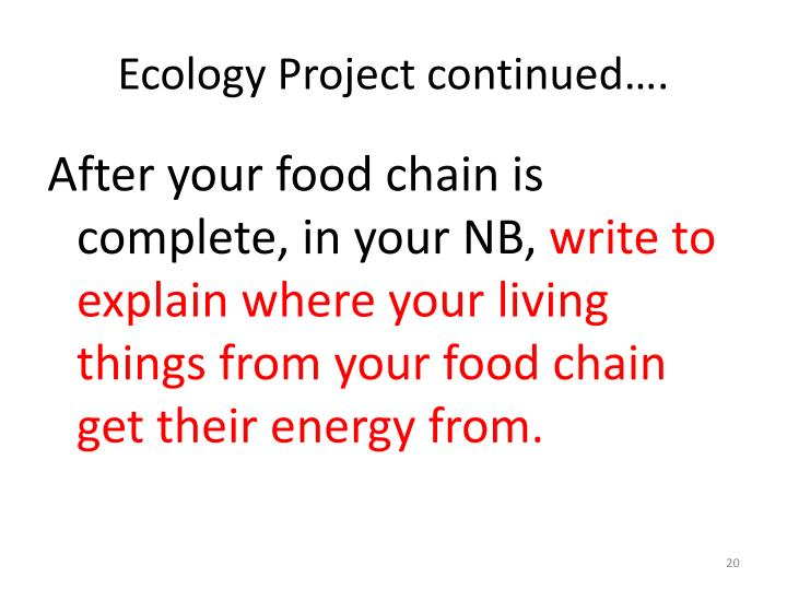 Ecology Project continued….