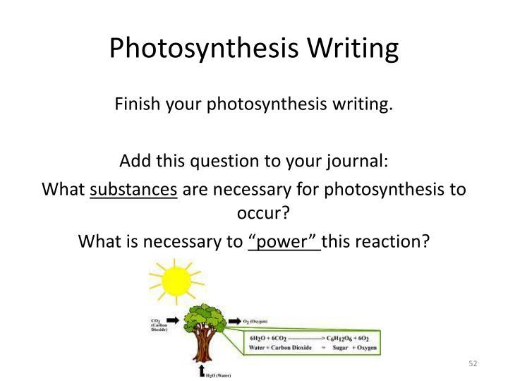 Photosynthesis Writing