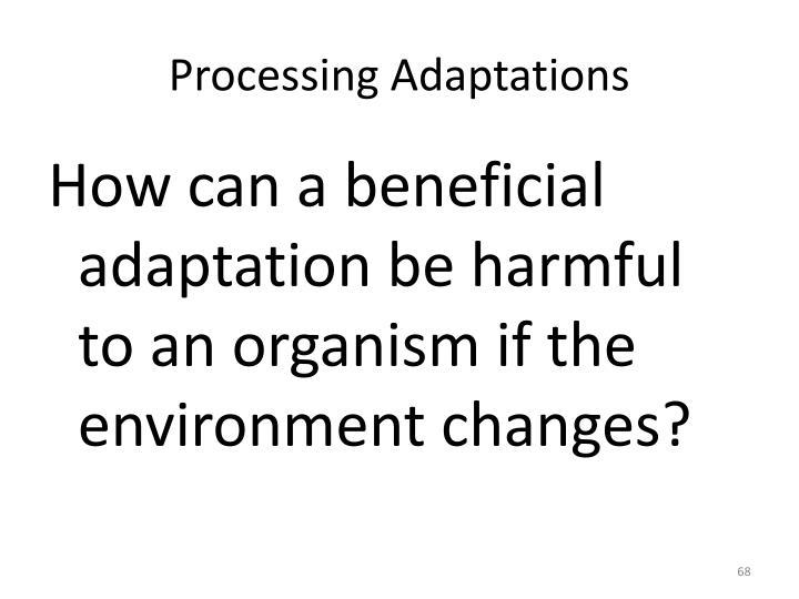 Processing Adaptations