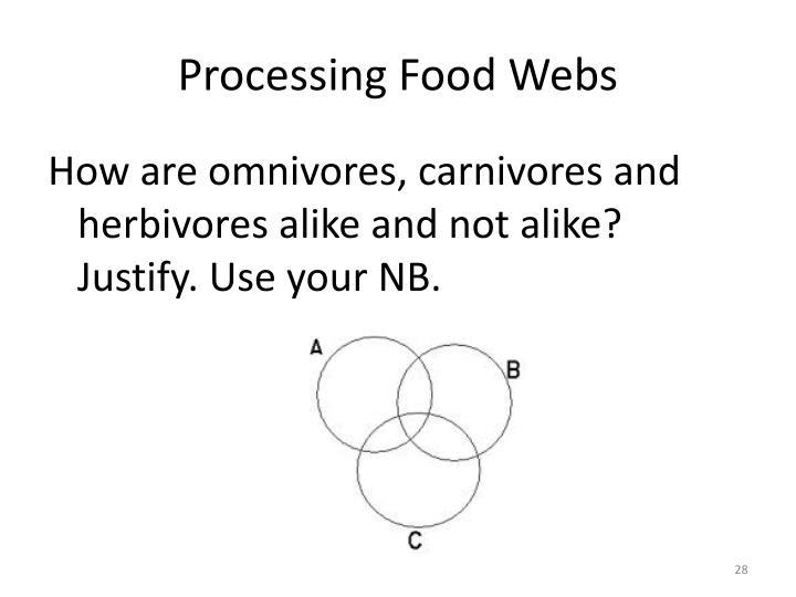 Processing Food Webs