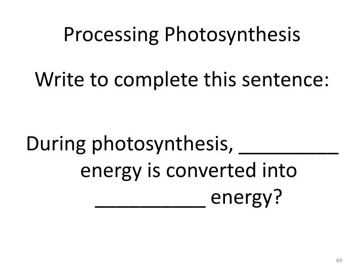 Processing Photosynthesis