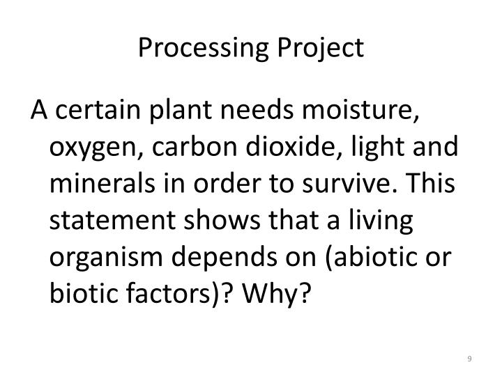 Processing Project