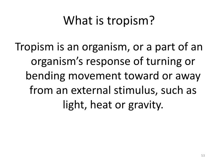 What is tropism?