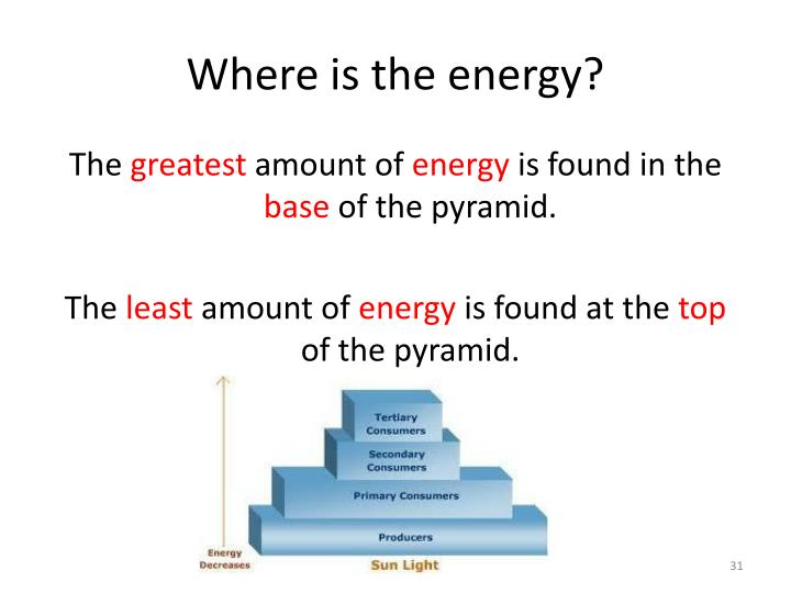 Where is the energy?