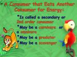 a consumer that eats another consumer for energy