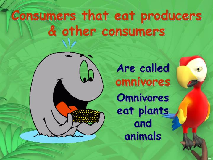 Consumers that eat producers & other consumers