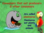 consumers that eat producers other consumers