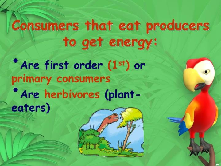 Consumers that eat producers to get energy: