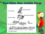 food chains show available energy