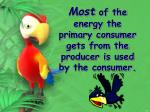 most of the energy the primary consumer gets from the producer is used by the consumer