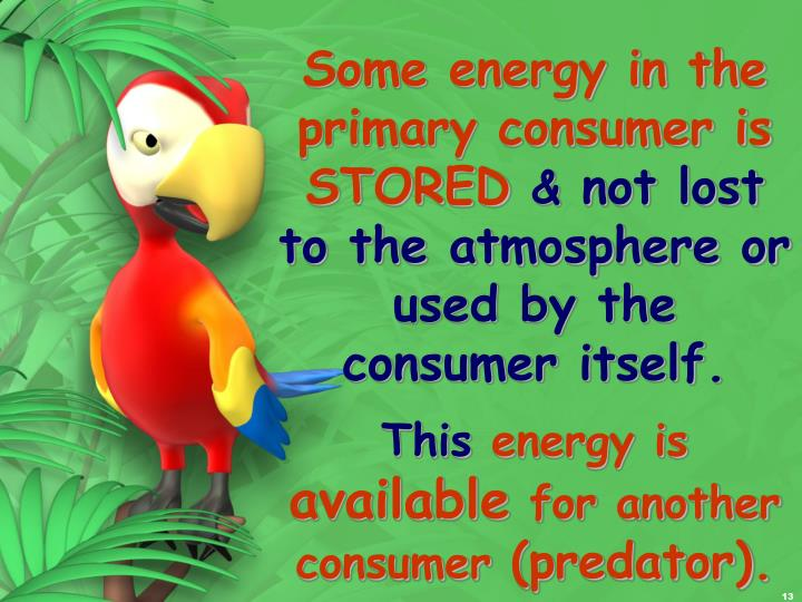 Some energy in the primary consumer is STORED