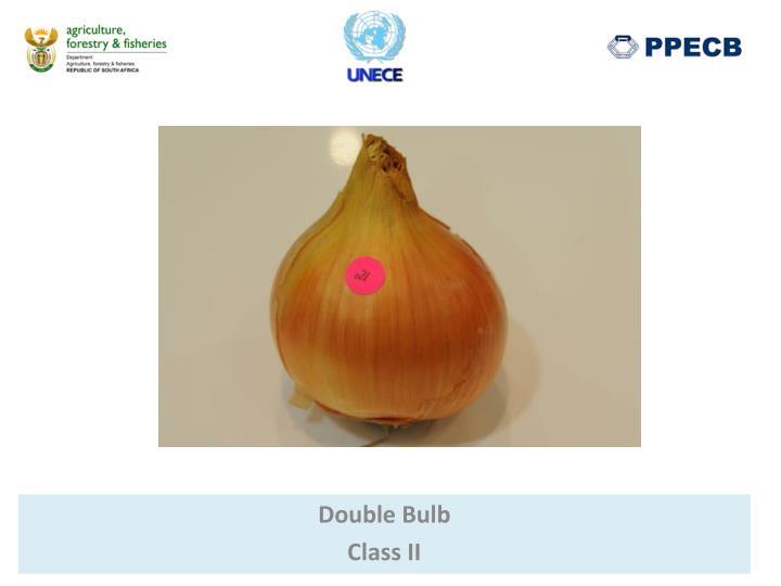 Double Bulb