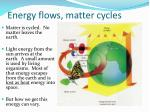 energy flows matter cycles