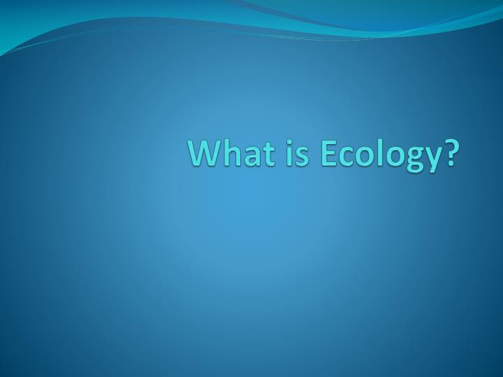 what is ecology