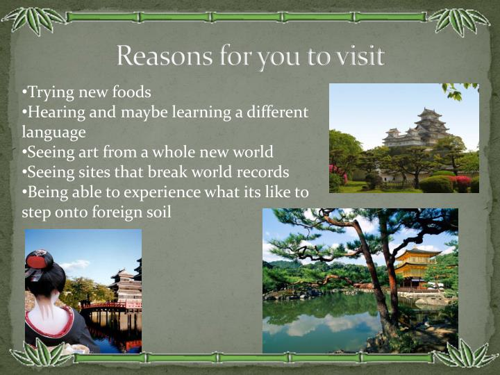 Reasons for you to visit