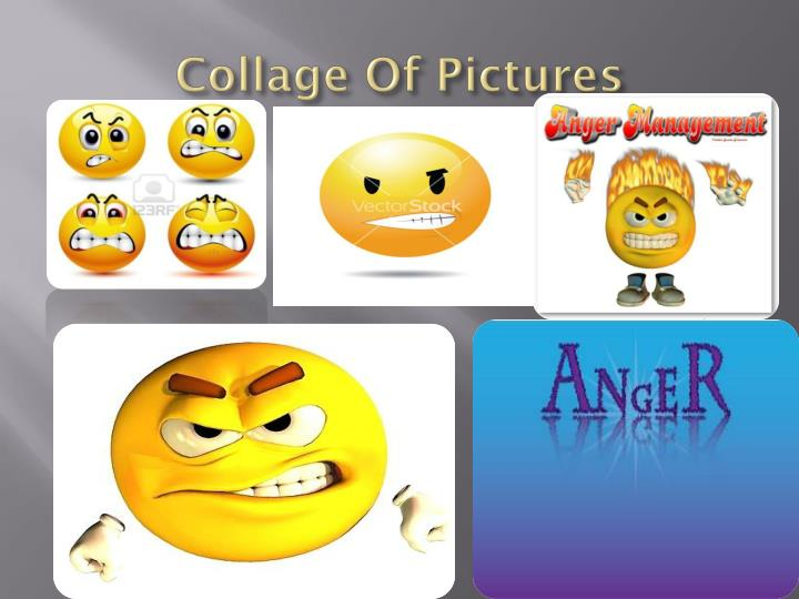 Collage Of Pictures