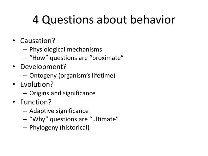 4 Questions about behavior