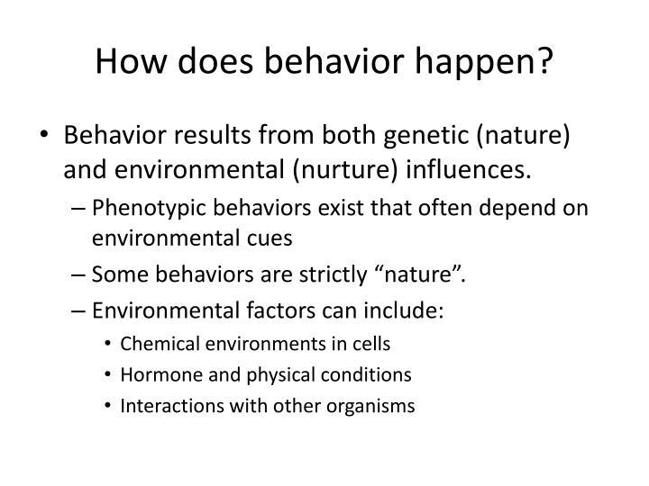 How does behavior happen?