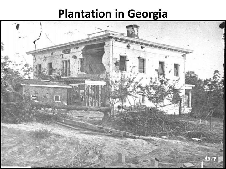 Plantation in Georgia