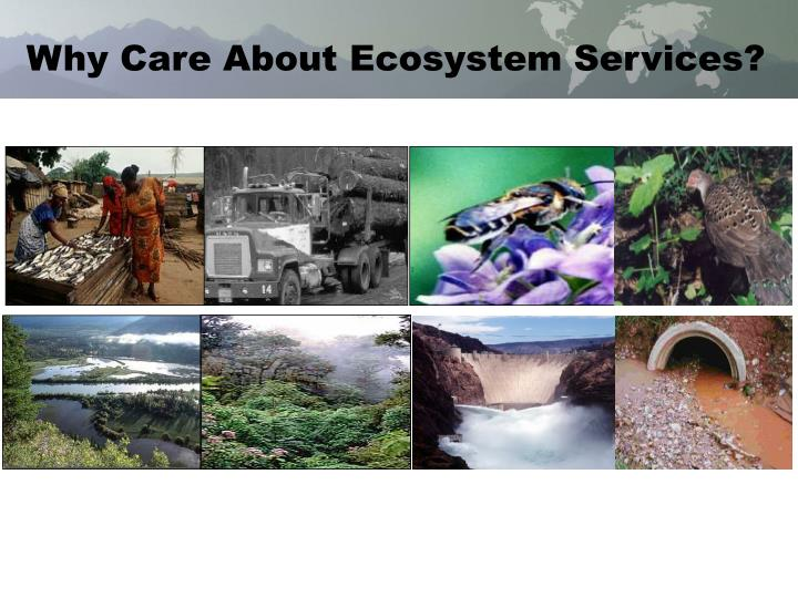 Why Care About Ecosystem Services?
