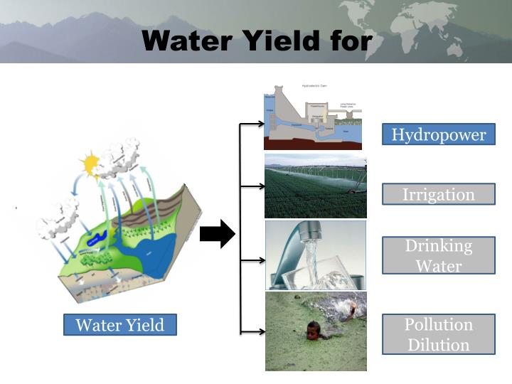 Water Yield for
