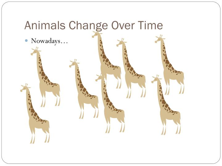 Animals Change Over Time