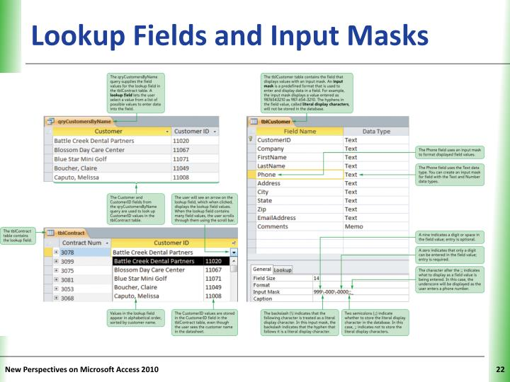 Lookup Fields and Input Masks